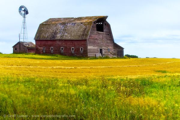 Barn with Windpump, Rural Saskatchewan