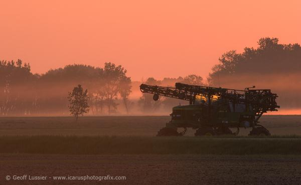 Morning Fog,  Portage la Prairie