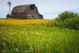 Barn, Rural Saskatchewan