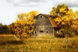 Old Barn in Fall, Beausejour, Manitoba