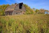 Old Barn in Fall, Virden, Manitoba