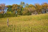 Old Farmhouse in Fall, Virden, Manitoba