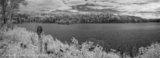 Lake IR, Kenora - pano