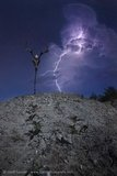 Macabre Lightning Nightscape
